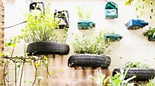 /.content/images/food/Urban-Gardening-dm-Online-Shop.jpg