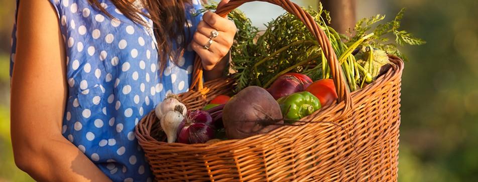 Foodsharing: So retten Sie Lebensmittel vor dem Müll.
