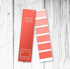 Living Coral Pantone Trendfarbe 2019 Dm Online Shop