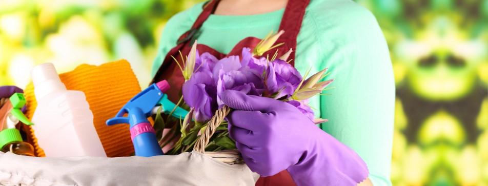 Wir zeigen Ihnen clevere Tipps für Ihren Frühjahrsputz.
