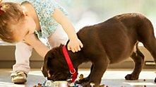 /.content/images/pet/2015_04_24_Baby-und-Hund_dm_Online_Shop.jpg