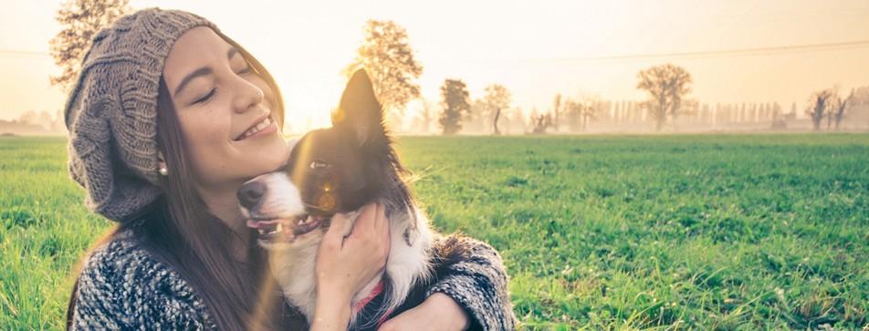 Viele Tiere suchen ein Zuhause - Hunde kann man auch über die Tiervermittlung finden.
