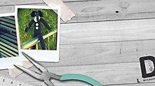 /.content/images/baby/Header_Sockentier_dm_Online_Shop.jpg