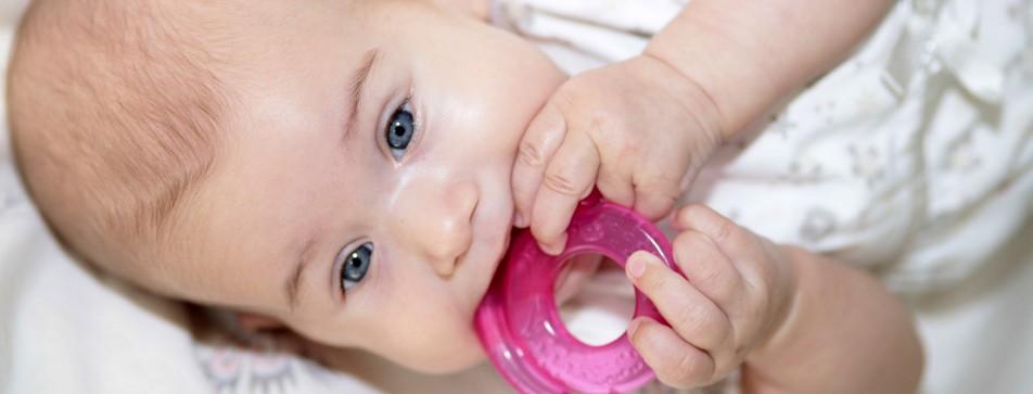 Die ersten Zähnchen und das erste Lächeln: die ersten Lebensmonate halten so viel Aufregendes für die Familie bereit.