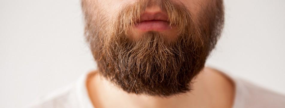 Bart liegt im Trend.