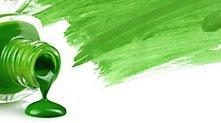 /.content/images/food/Trendfarbe_Pantone_Greenery2.jpg