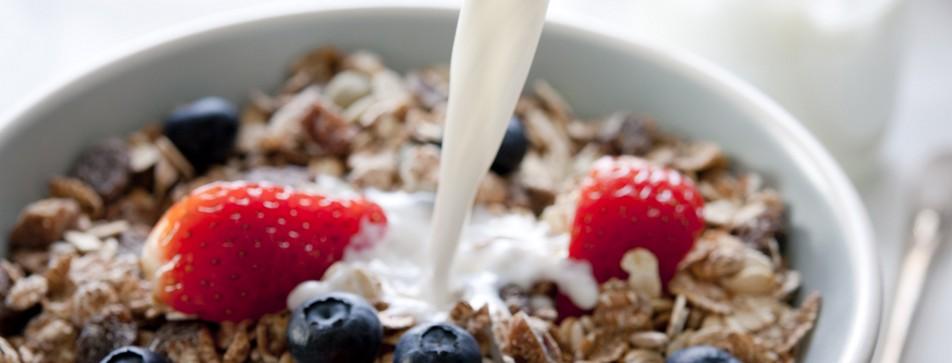 Hochwertiger Milchersatz in der veganen Ernährung.