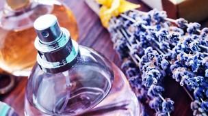 /.content/images/fragrance/den_richtigen_duft_finden_dm_online_shop.jpg
