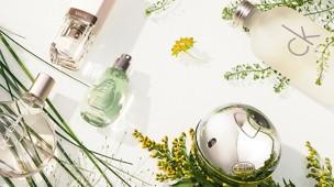 /.content/images/fragrance/Header_sommerduefte.jpg