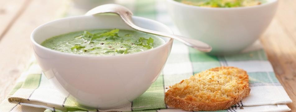Auch ein leckeres Suppenrezept: Endividensuppe