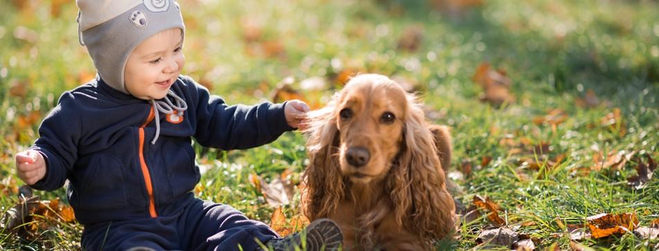 Tiere können viel zur Entwicklung von Kindern beitragen.